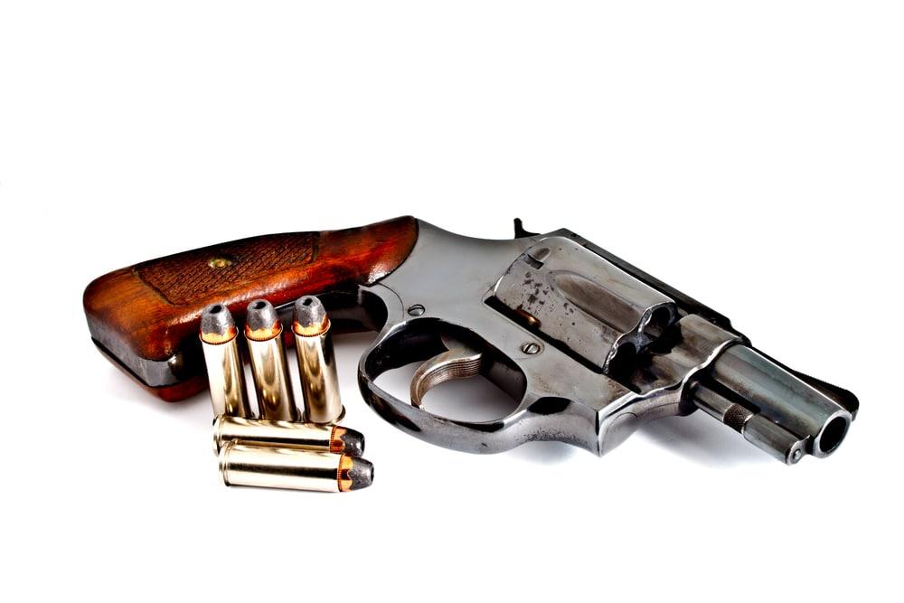 5. Home Gun Laws danibone.jpg