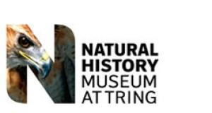Natural History Museum at Tring.jpg