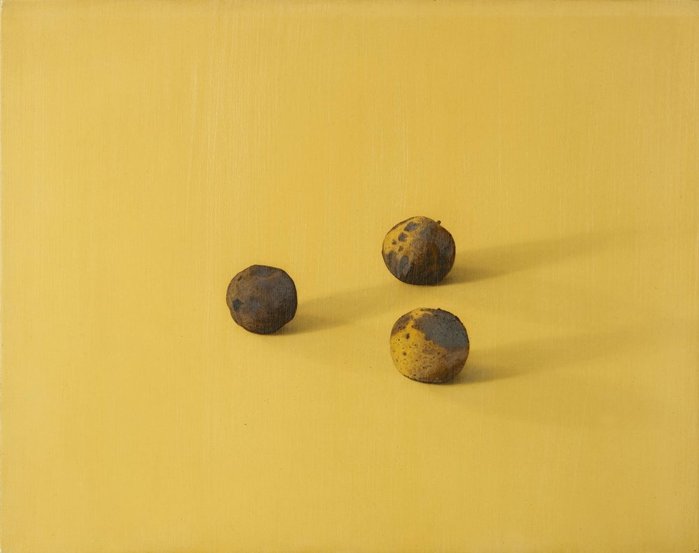 Black Walnuts, 2012, 14x18, o/l