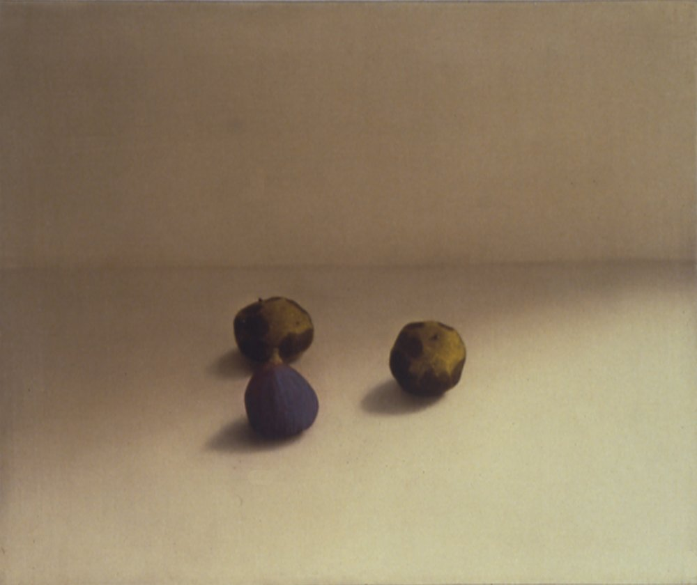 Black Walnuts and Fig, 1997, 15x18, o/l
