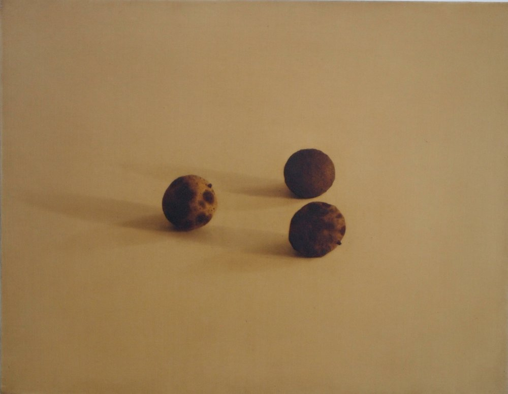 Black Walnuts, 1995, 14x18, o/l