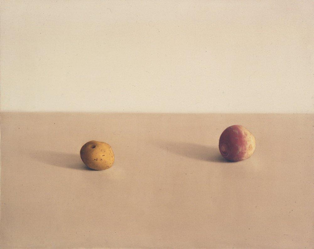 Still Life, 1994, 16x20, o/l