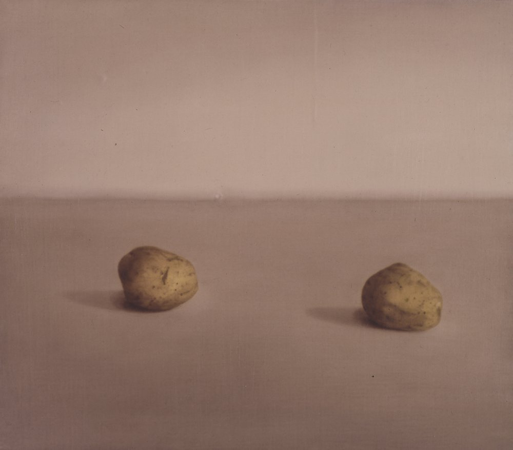Still LIfe (lighter version), 1993, 14x16, o/l
