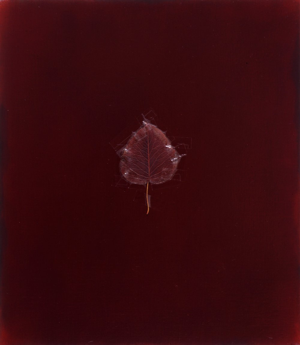 E. 6th St, NYC, 1992, 1992, 16x14, oil, leaf and tape on linen