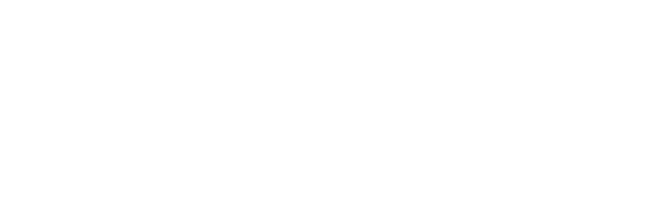 Magic Bird studio