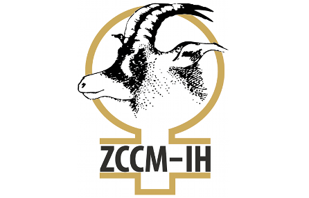 ZCCM-IH-news-logo.png.pagespeed.ce.k-NefNRGwt.png