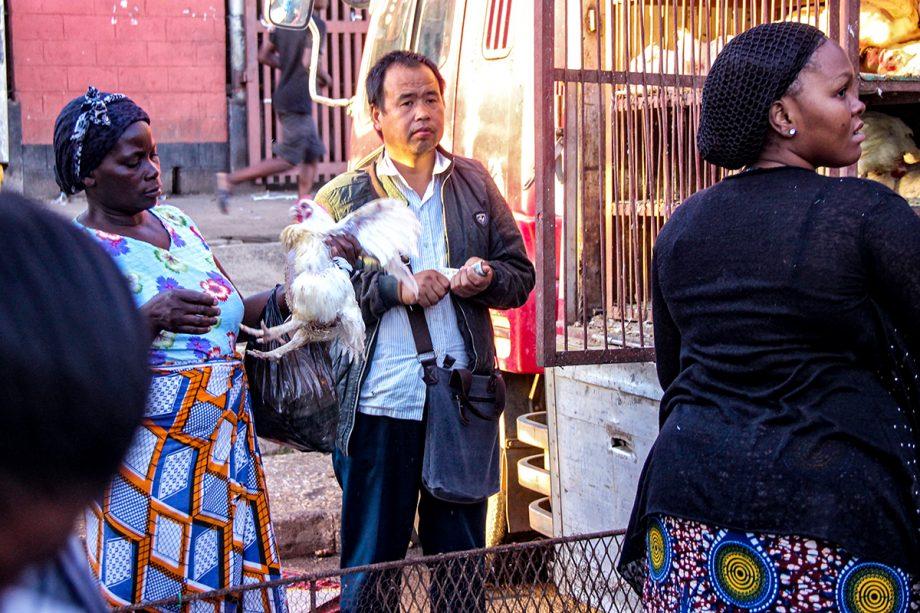 GPJNews_Zambia_PP_Chinese-Chicken-4_Web-920x613.jpg
