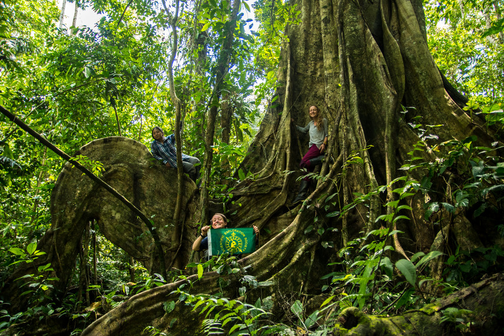 Who we are - We're a team of British - Peruvian filmmakers, journalists and scientists embarking on an expedition to a remote corner of Peru's rainforest.
