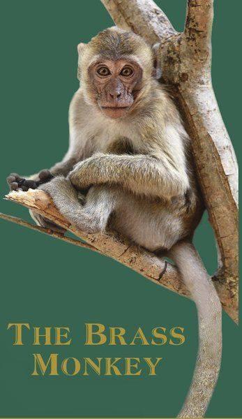 brass monkey gloucester ma