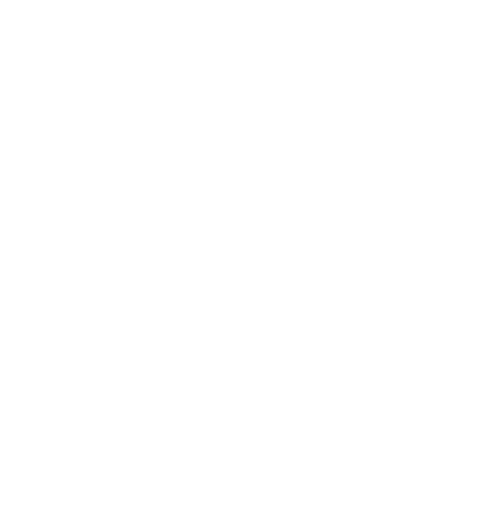 Skateparks Project