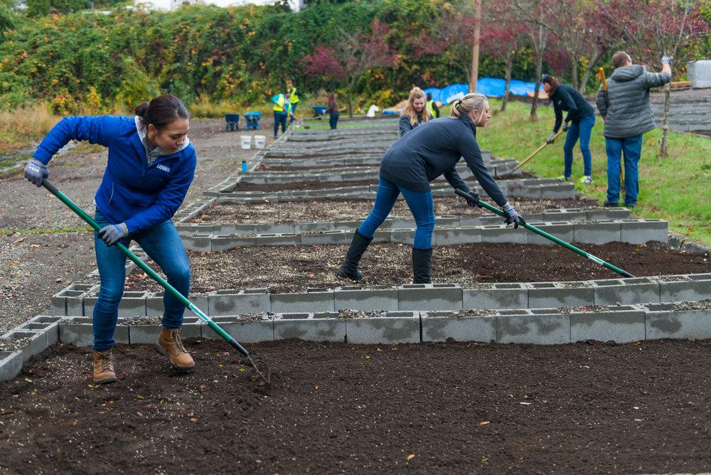 World Relief |Refugee & Immigrant Food Garden & Teaching Kitchen | Seattle, WA | 2018