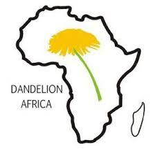 Danelion Africa logo.jpg