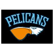 pelicans.png