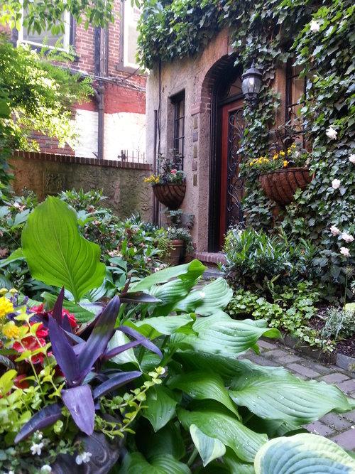 Courtyard Gardens — Philadelphia Gardens