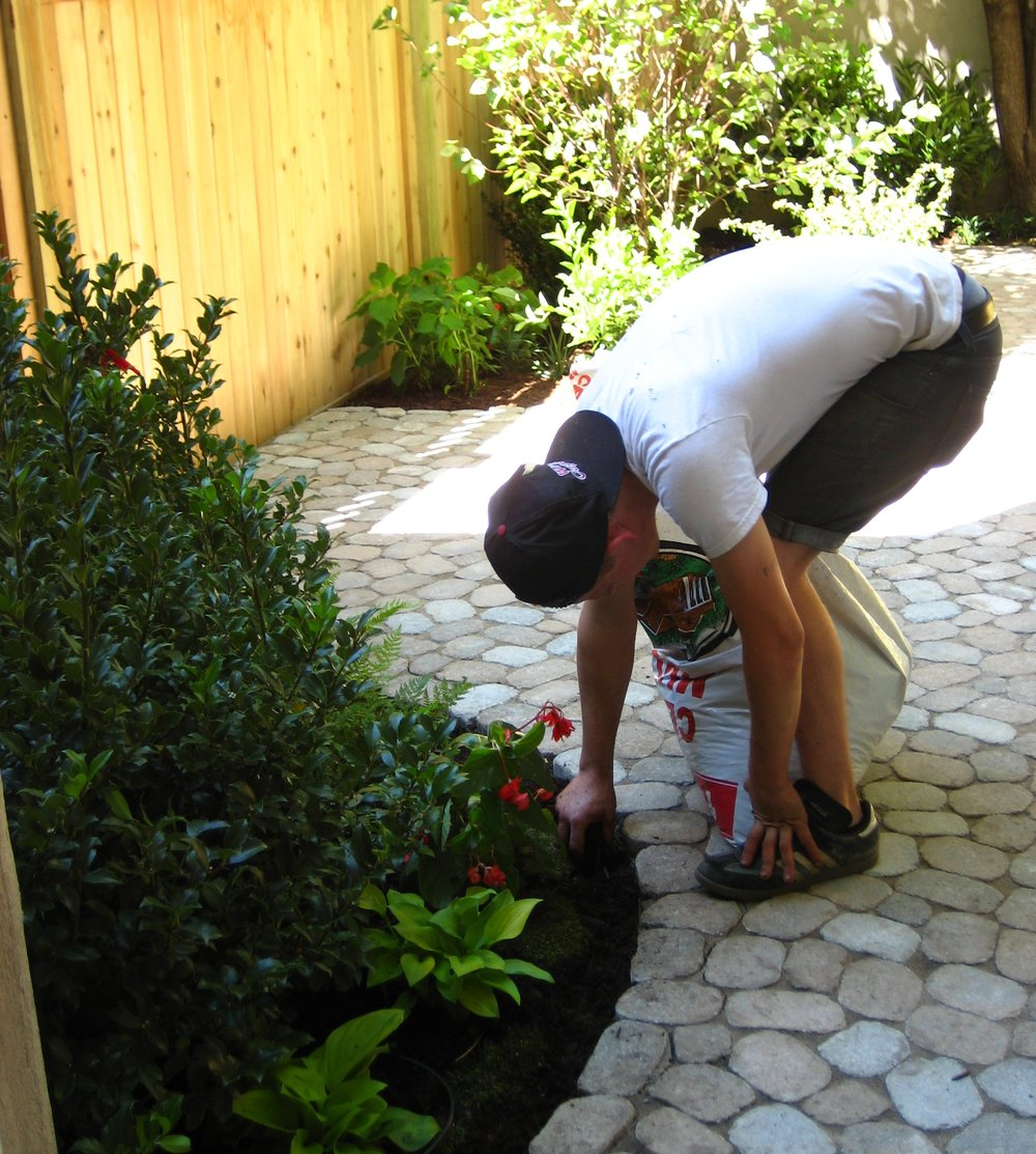 No-Mess Installation   Many of our clients have gardens that are difficult to access or require carrying equipment and plant material through their homes. Our crew has been trained to leave no trace of our passage behind.
