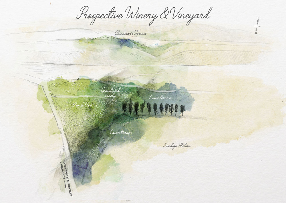 Prospective-Vineyard-illustration2.jpg