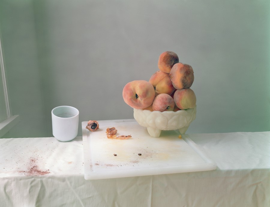 Why We've Always Been Obsessed With Photographing Our Food -