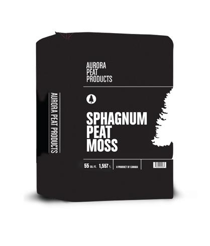 sphagnum-peat-moss-big.jpg