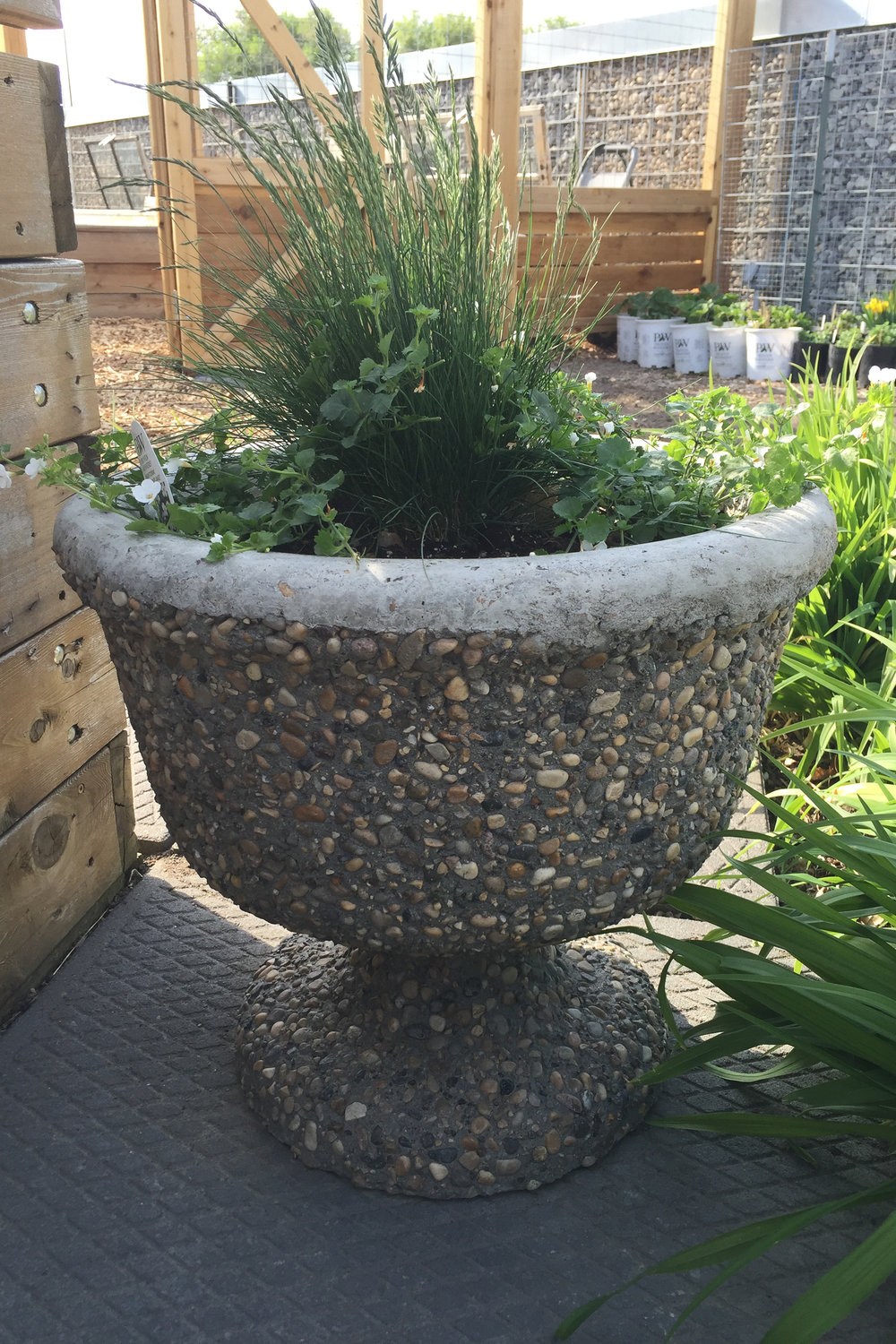 Concrete-Flower-Pot.jpg