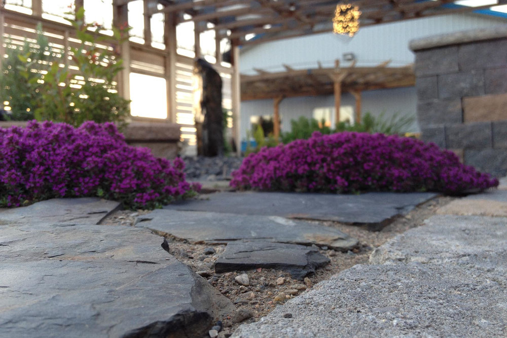 flagstone-path-6.jpg