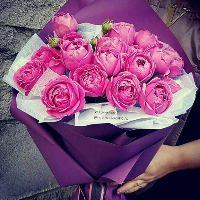 Beauty of peonies♥️♥️♥️ # Nirvana's flower# Valentine's Day