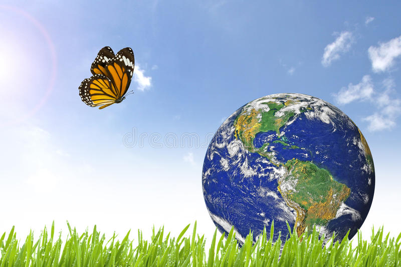 butterfly-planet-earth-beautiful-green-grass-sunny-day-blue-cloudy-sky-elements-image-furnished-nasa-64281579.jpg
