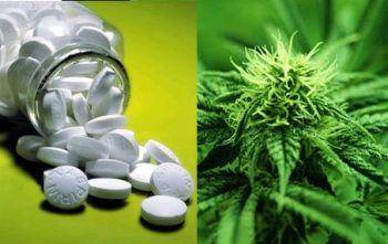 pills-vs-hemp.jpg
