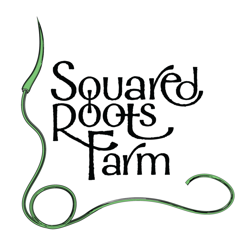 Squared Roots Farm Logos_ALTERNATE NO STROKE.png