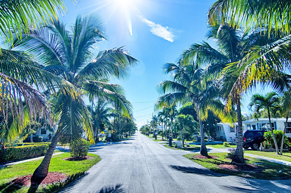 moving to Florida.jpeg