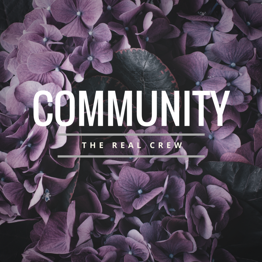 RealCrewCommunity