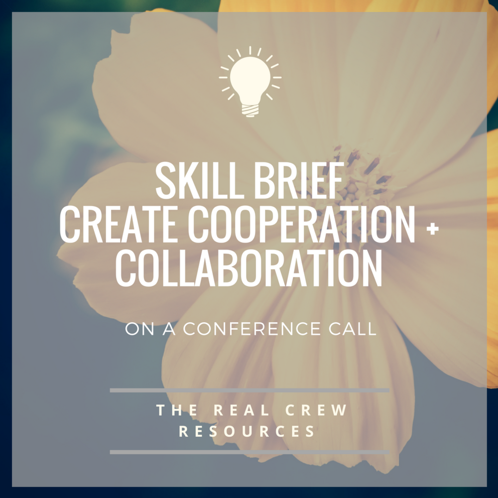 Skill Brief - Create Collaboration and Cooperation in a Conference Call
