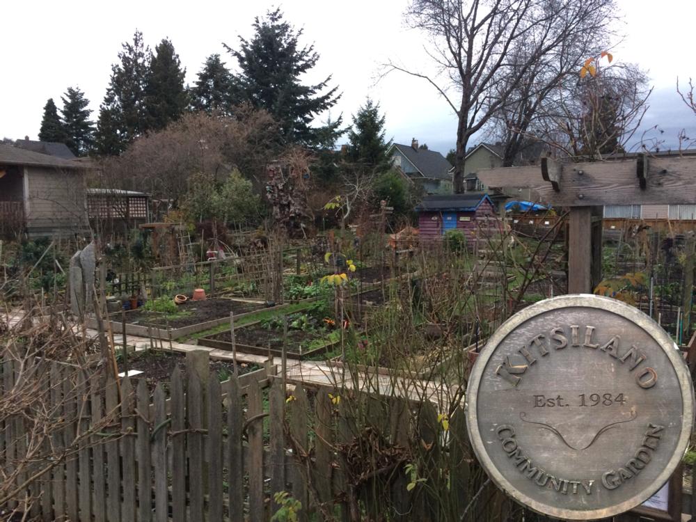 Community Garden D.png