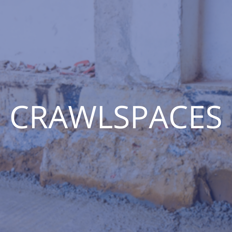 CRAWLSPACES.png