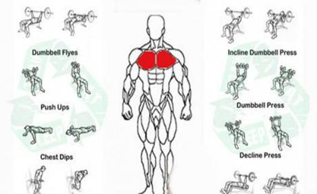 chest-exercises-for-men-L-SATVqT.jpeg