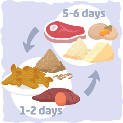 graphic_what-is-the-cyclical-ketogenic-diet-exactly-1.png
