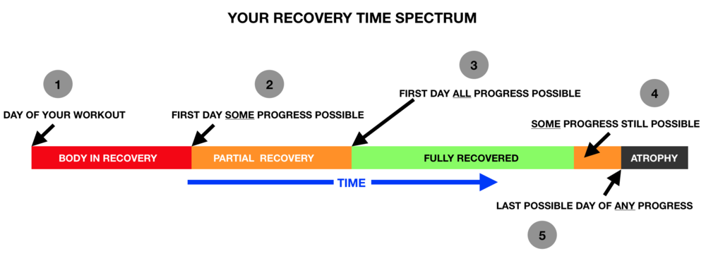 Recovery-2.png
