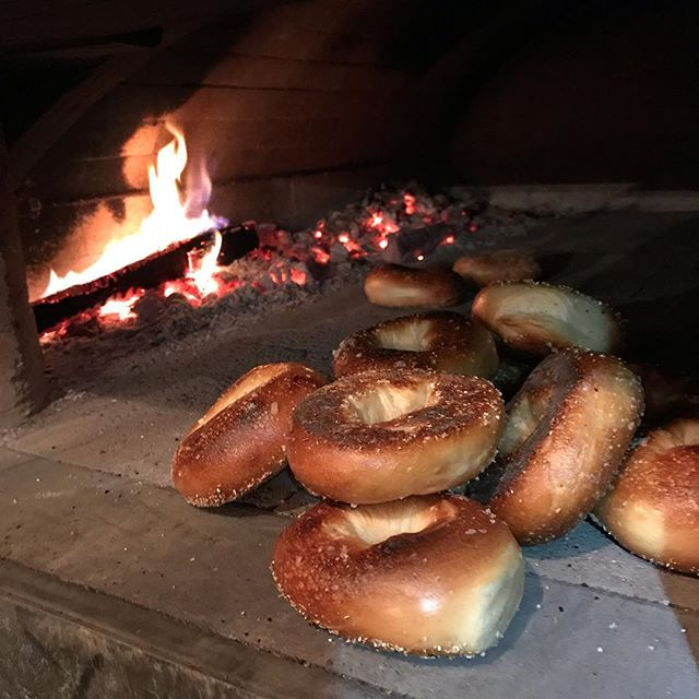 Wood fired bagels are available at the East Aurora Co-op today. A little crunch, a lot of chew, satisfying the whole way through.  #woodfiredbagels #woodfiredbaking #bagelandcreamcheese