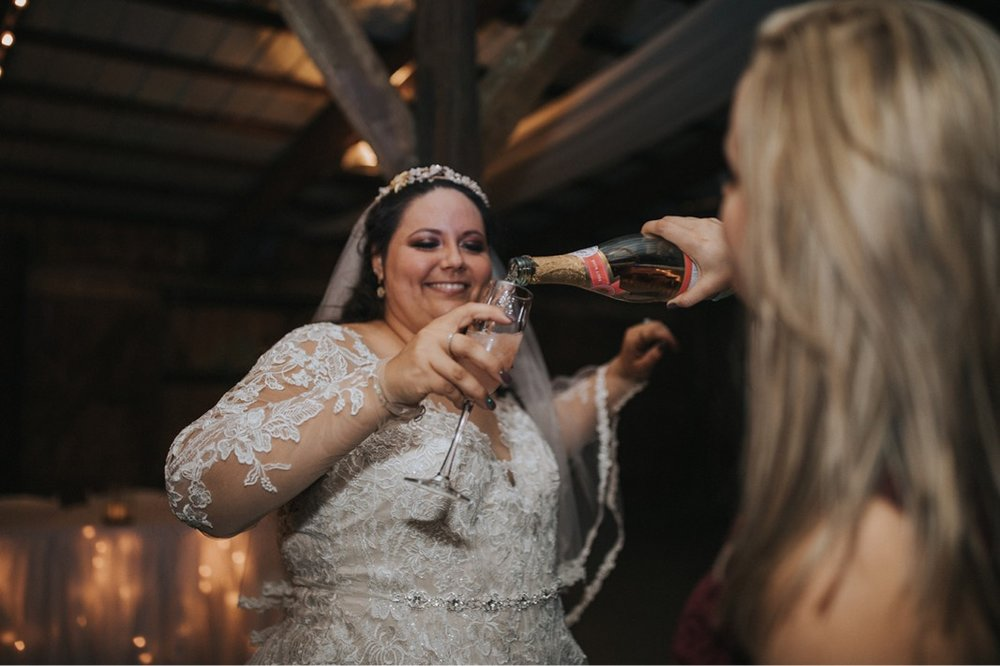 59_5W9A1484_Fun_adventurous_Wedding_Barn_Ohio_Party_natural_reception.jpg