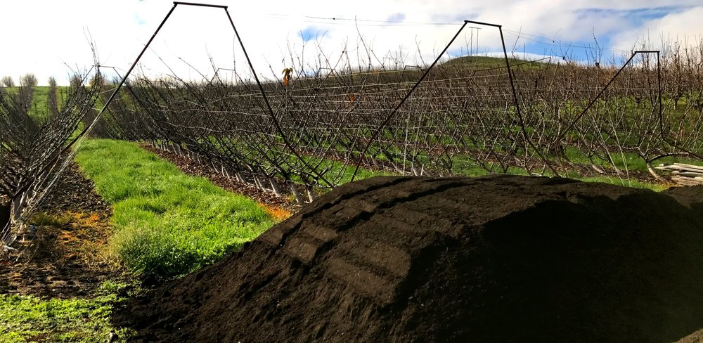 COMPOST SPREADERS - ORCHARD + VINEYARD