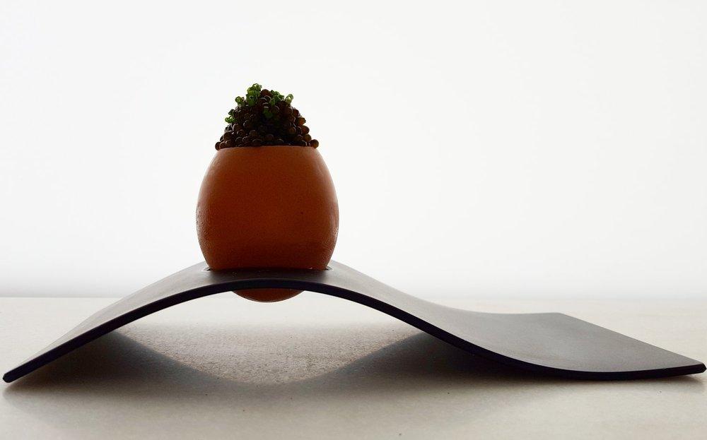 Egg Caviar