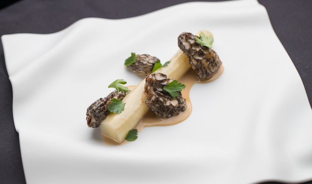 White Asparagus and Morels