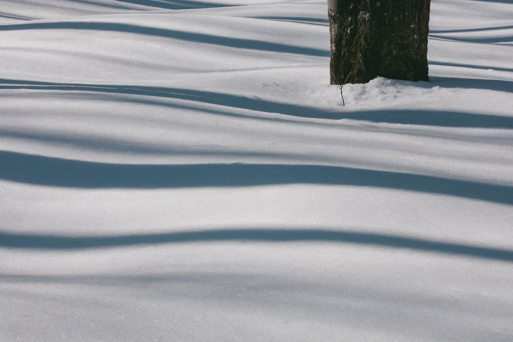 BLOG-Embracing-Winter-Pt2-12.jpg