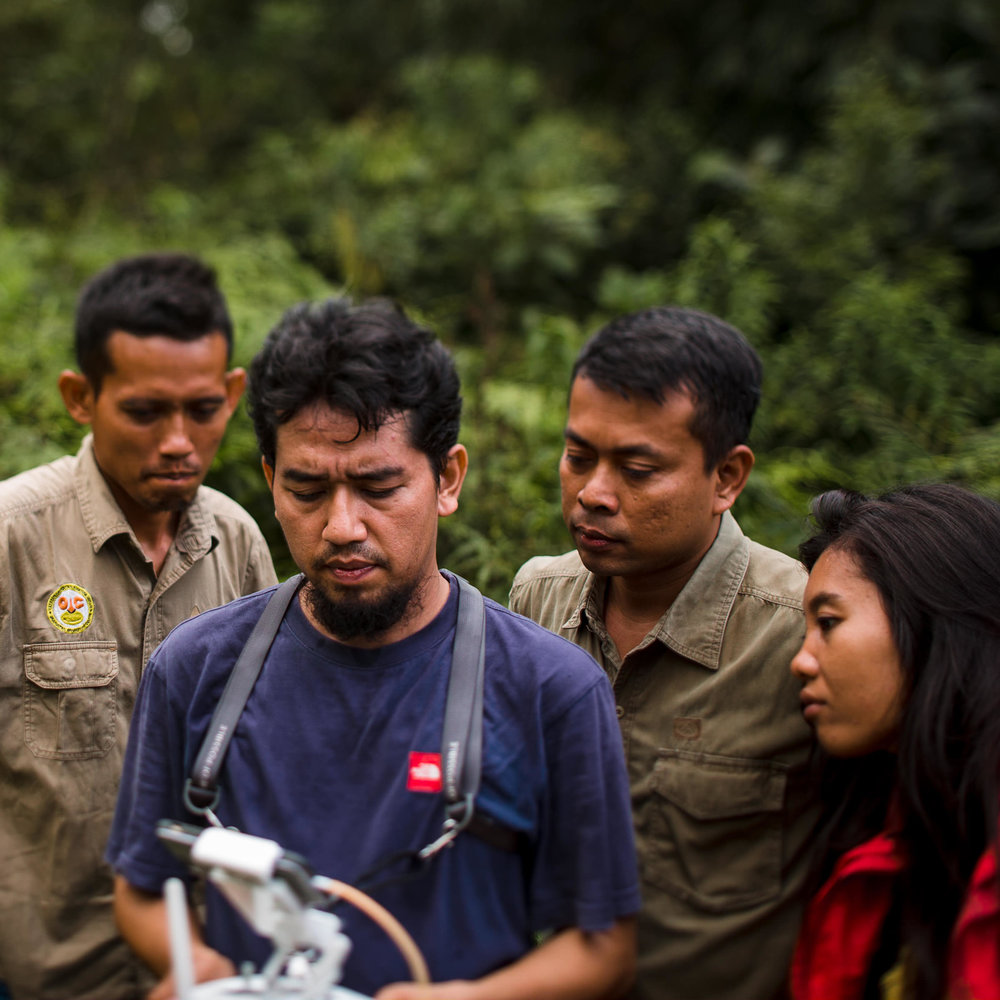 OIC staff performing drone recon of rainforest border - Sumatra