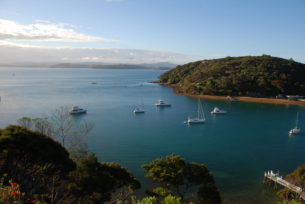 Boats in the bay at Kawau Island