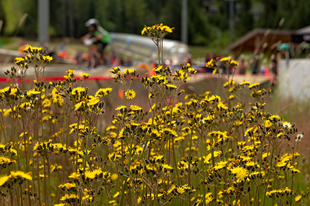 2018_0721_PumpTrack319-Edit.jpg
