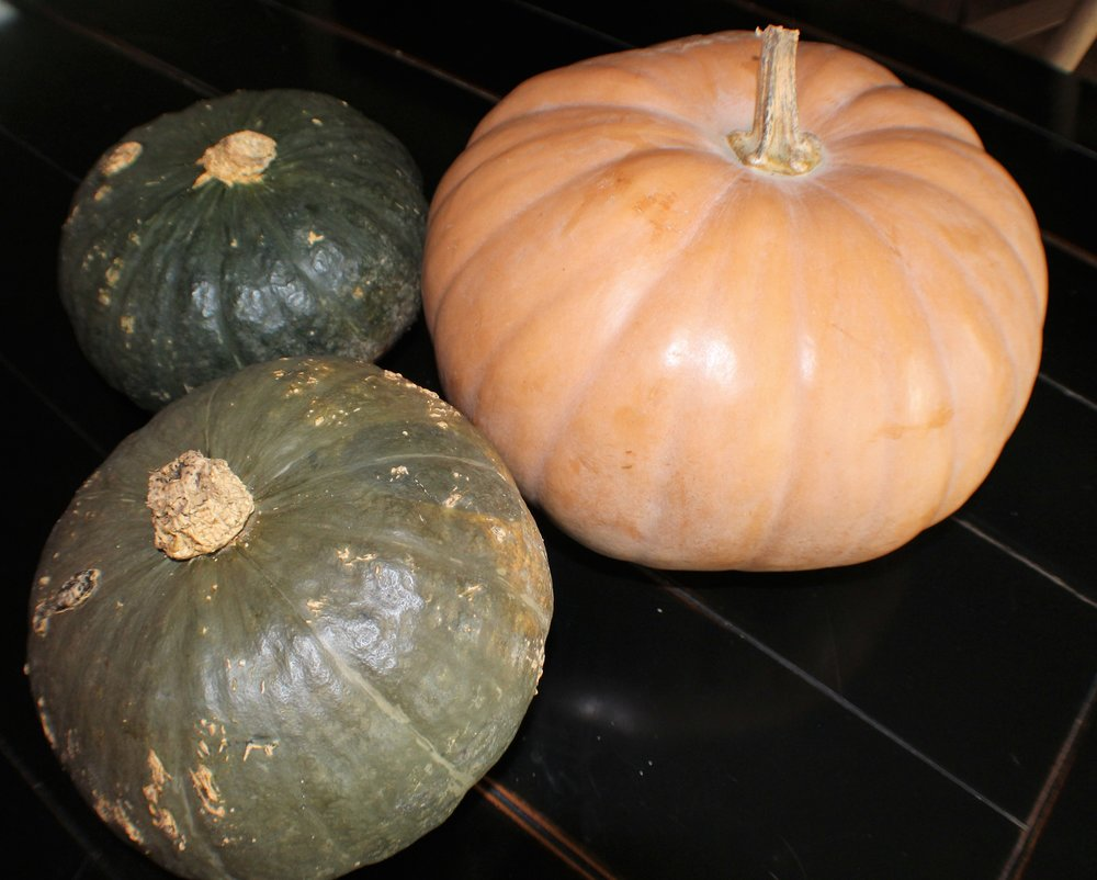 Long Island Cheddar and kabocha squash.JPG