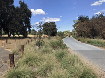 13.6 acres of open space including 3.3 additional acres in the Putah Creek Corridor (bike loop) -