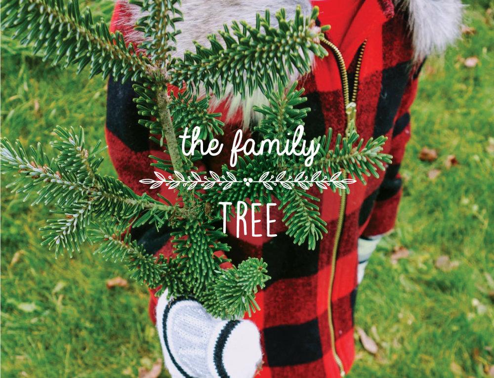 Lifeandwhim-christmastreefarms-holidaytraditions.jpg