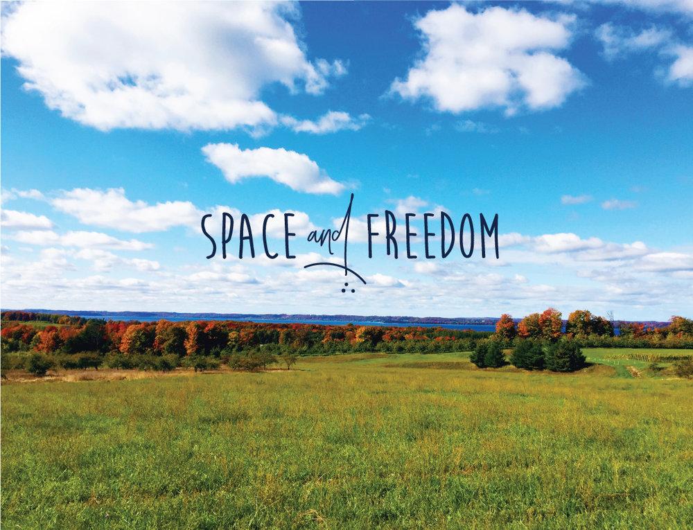 Lifeandwhim-spaceandfreedom-traversecity.jpg