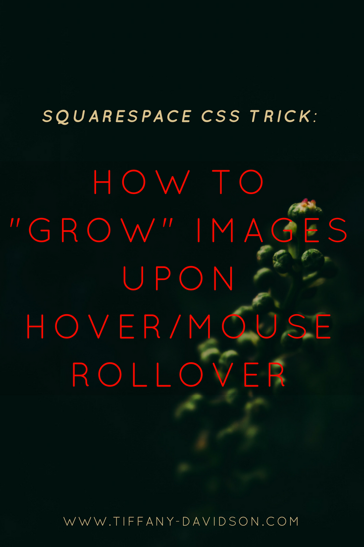 squarespace hover rollover image effect — Blog — Tiffany